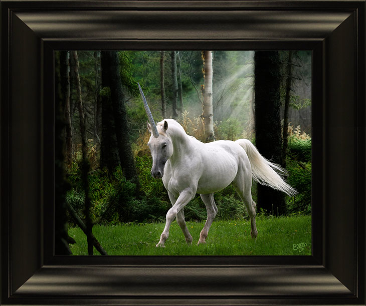 Unicorn Photoshop Art